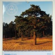 Календарь для профсоюза